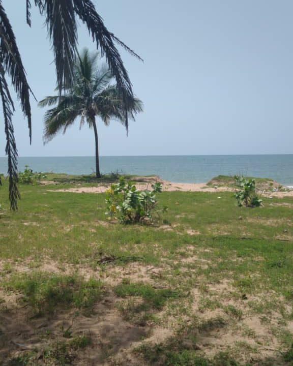 Terrains 300 mètre carré bord de mer pointe sarène2