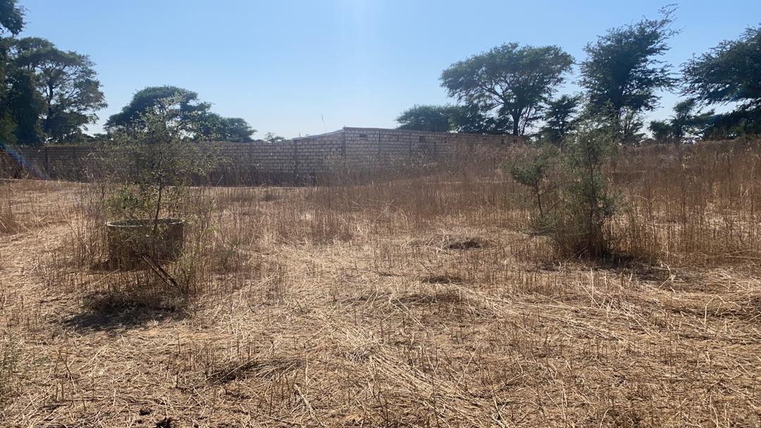 terrain 300 mètres carré à vendre à malicounda 5