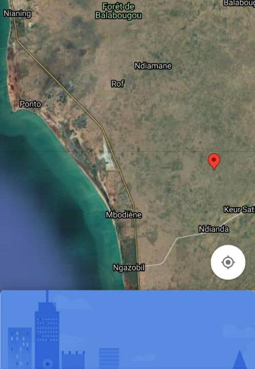 Terrain 1 ha 475 m2 à Mbodiène 2